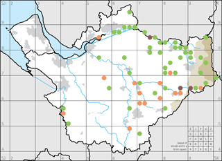 Figure 5: River species.